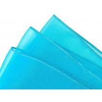 Turquoise Organza